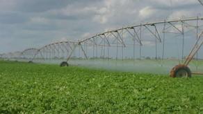 De Cuba - Par René Lopez Zayas - Irrigation des champs