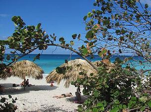 Savourer un bon Pina Colada sur la plage à côté du Bar Dos Mares