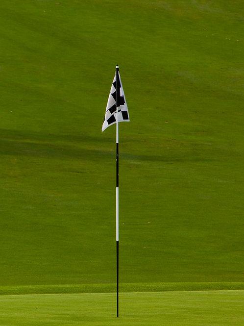Tournament 7ft Javelin Pin Fully Tapered Metal Ferrule