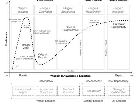 Mentor Programme Model