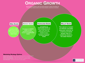 Business Advice Organic Growth Model