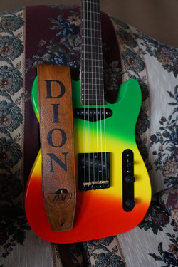 Dion Guitar and strap 2