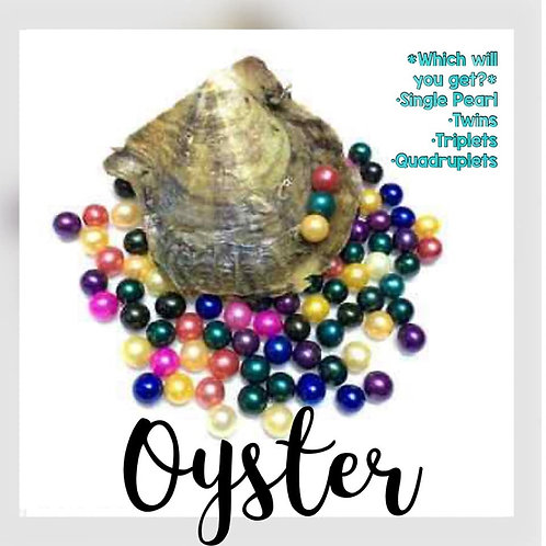 OYSTER & MYSTERY CAGE