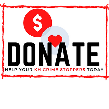 Donate now (1).png