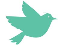 Teal Bird.png