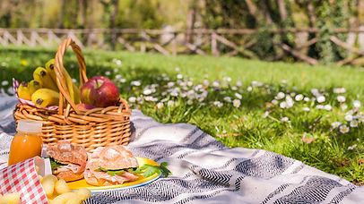6213304_052620-cc-ss-outdoor-picnic-img.