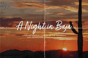 A Night in Baja.png