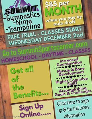 Homeschool Classes Flier 2020 Online Ver