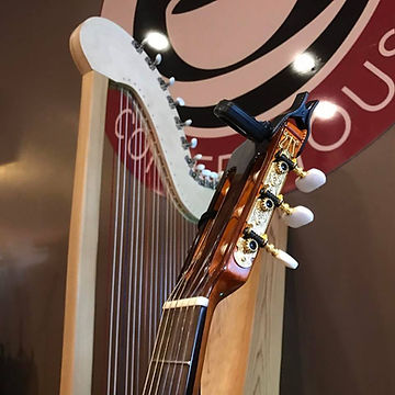 guitar harp.jpg