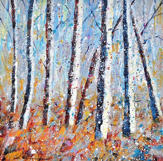Birken herbst/winter - birches autum/winter