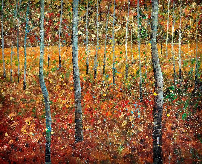 Birken in braun - birches in brown