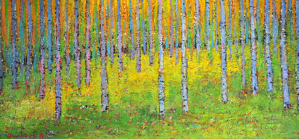 Branko - forest in springtime