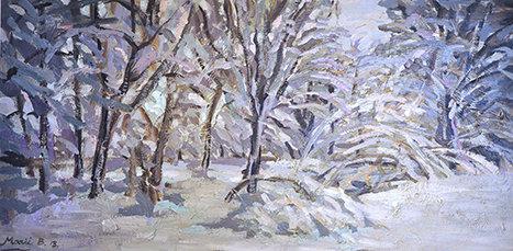 Branko forest in wintertime