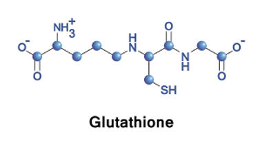 glutathione-chemical-formula-1.jpeg