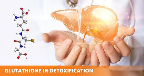 glutathione-body-detoxificationjpg.jpg
