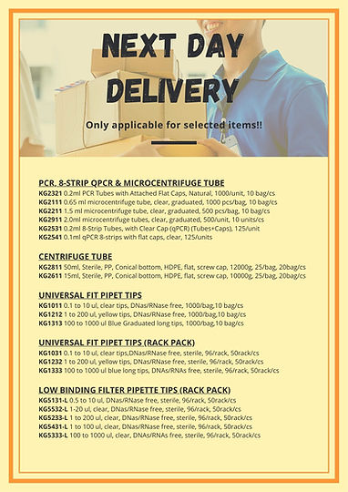 Next day delivery 1.jpg