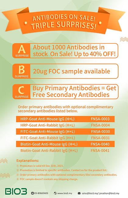 FineTest Antibody promotion.jpg