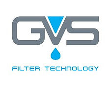 GVS_edited.jpg
