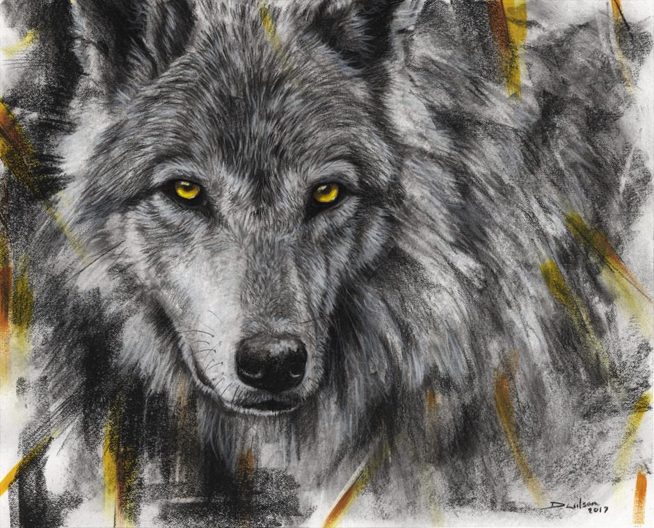 Citrine Wolf - £100