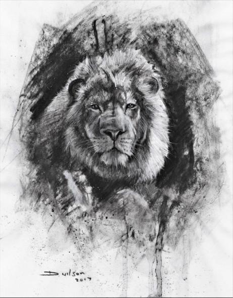 Lion I - £150