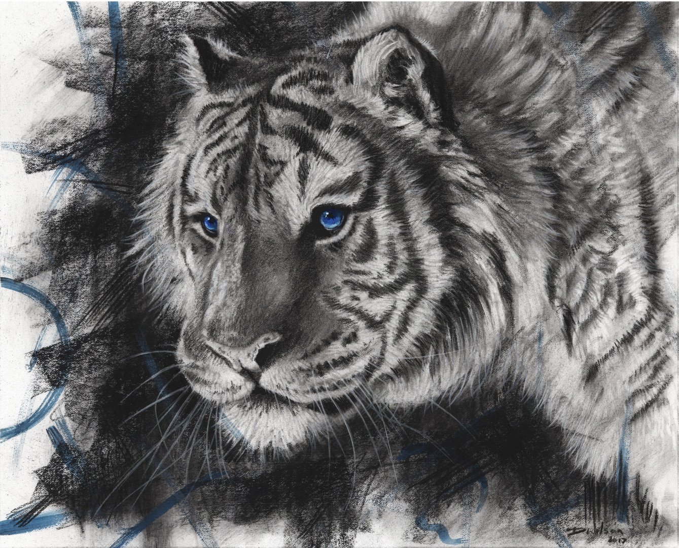 Saphire Tiger (Sold)