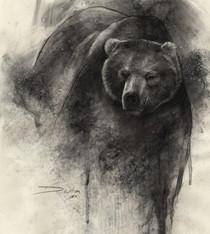 Bear (£400)