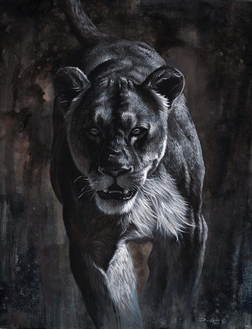 lioness sd1.jpg