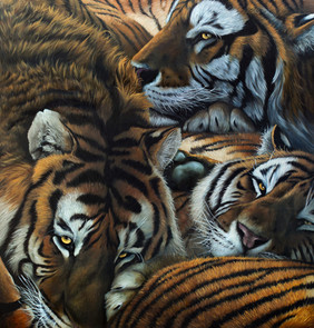 Daniel Wilson-Brothersinarms-animal beha