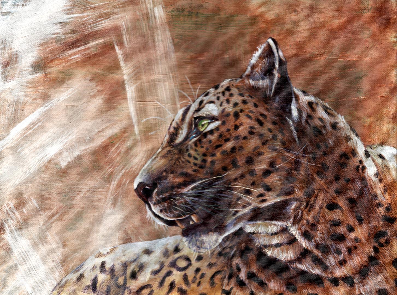 leopard1_edited.jpg