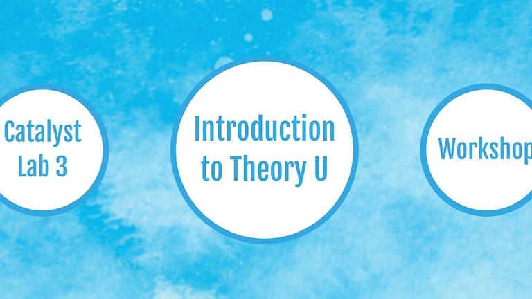Collaboratio helvetica: Einführung in Theory U