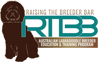 RTBB Logo.png