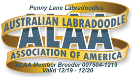 Penny Lane ALAA Logo 2020