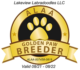 ALAA GOLD PAW.png