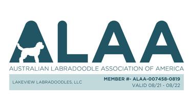 ALAA Registration.jpeg