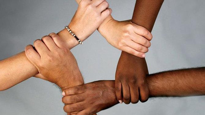 Integration, Social Inclusion and Gender Equality Advisor