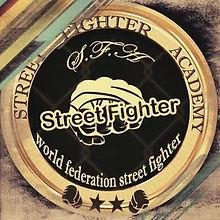 STREET FIGHTER ACADEMY EGYPT.jpg