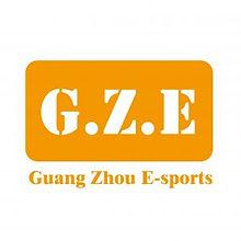 GUANG ZHOU E-SPORTS ASSOCIATION (GZESA).