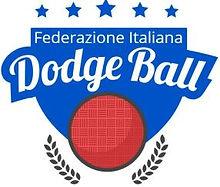 federdodgeball.jpg