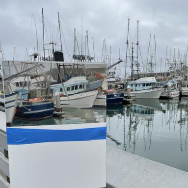 Half Moon Bay fishing dock