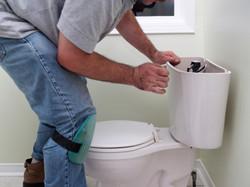 toilet_bowl_flush_cistern