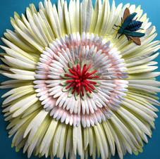 Bloom - Stella Coultas