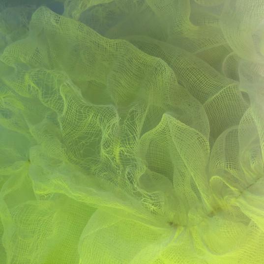 Green Mist - Stella Coultas