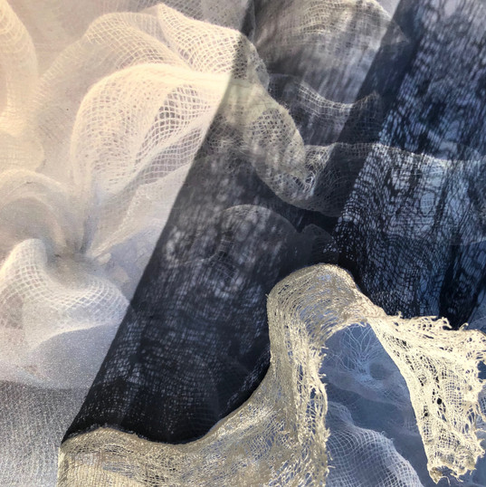 Veiled Shadows - Stella Coultas