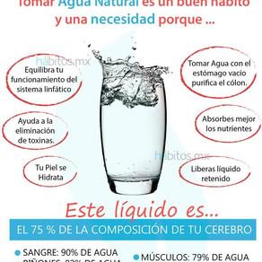BEBER AGUA - LO IMPORTANTE QUE ES!!!