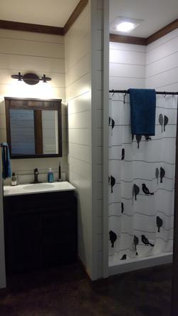 Modern Bathroom, shiplap walls