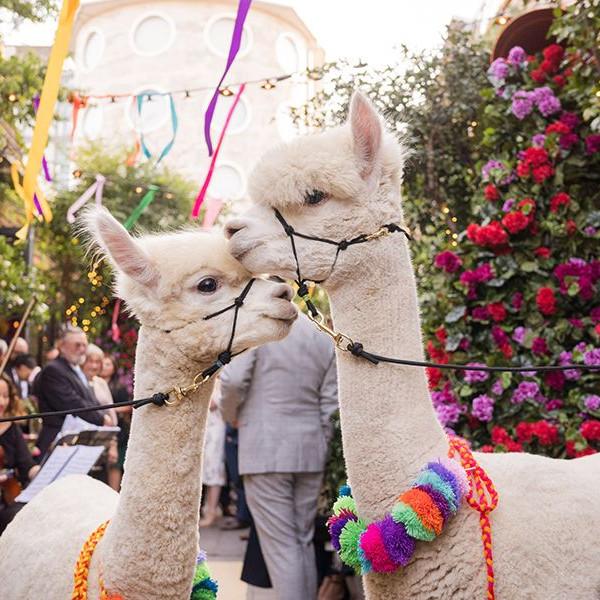 Bicentennial Celebration of Peruvian Independence