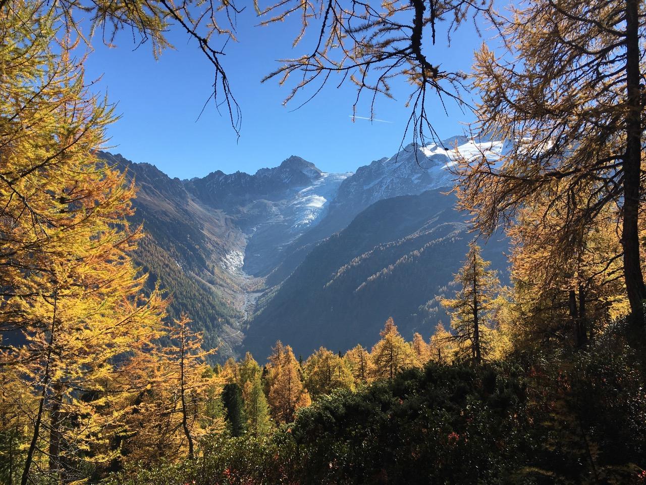 Trient_glacier-tzeppes