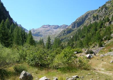 Vallon glaciaire de Bérard