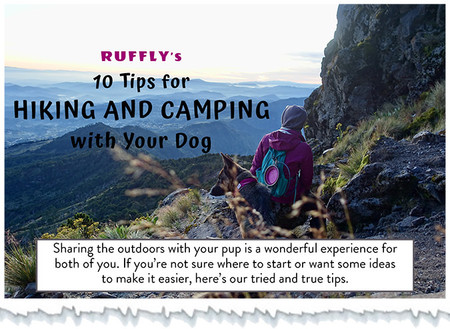 cover-of-hiking-and-camping-with-dog-tip
