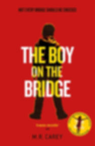 boy on the bridge.jpg